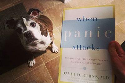 Book Review:When Panic Attacks – David D. Burns