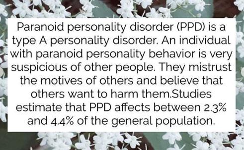 paranoid personality disorder 2